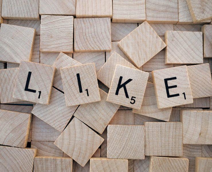 social-media-nischenseite